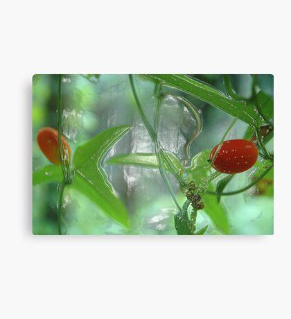 wild fruit Canvas Print