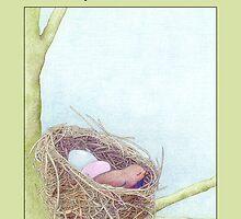 Bird's Nest Congratulations by Mariana Musa