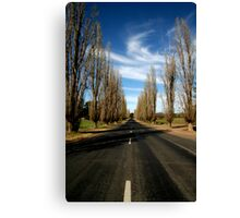 Country Road Canvas Print