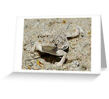 Horned Lizard Greeting Card
