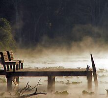 Fog on the Lake by Judy Gayle Waller