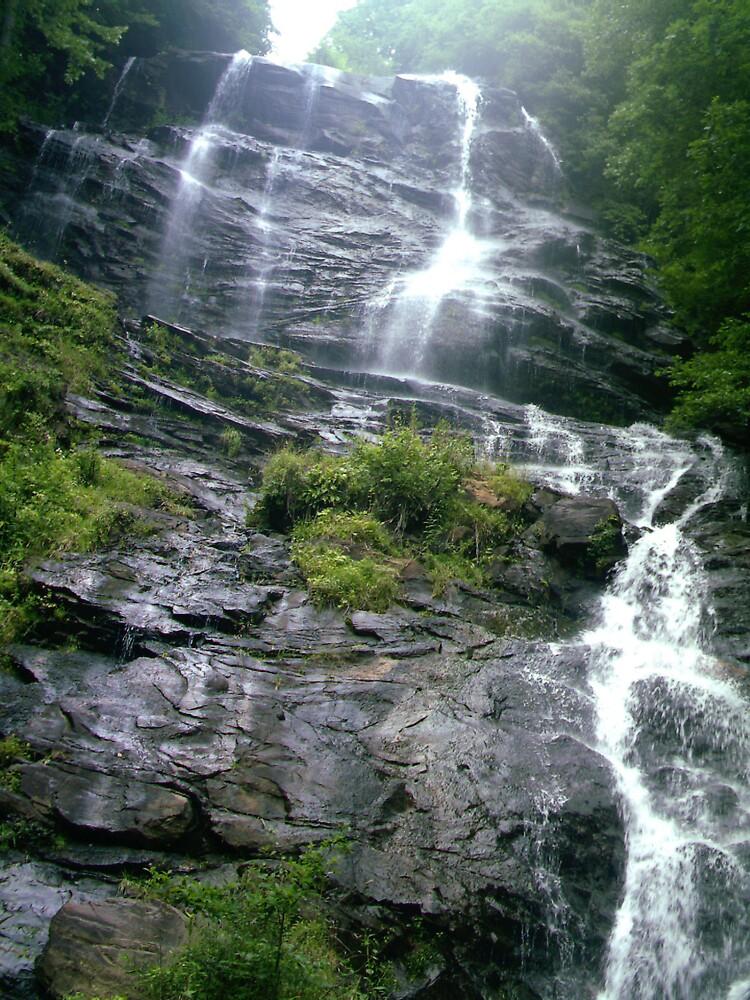 Amcalola Falls! by volcomgrl17