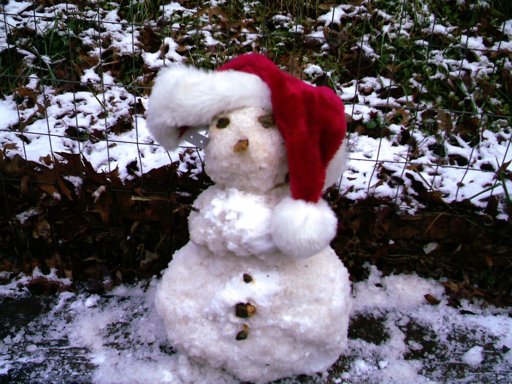 Baby Snowman! by volcomgrl17