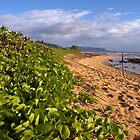 Kauai Beach by wyllys