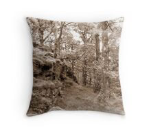 Birch & Bank Throw Pillow