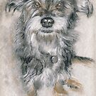 Bella - original charcoal dog drawing by Paulette Farrell