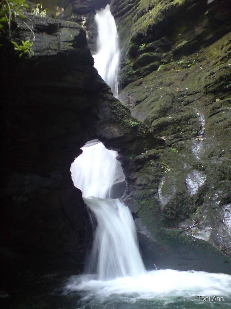 flowing by Toni Ann