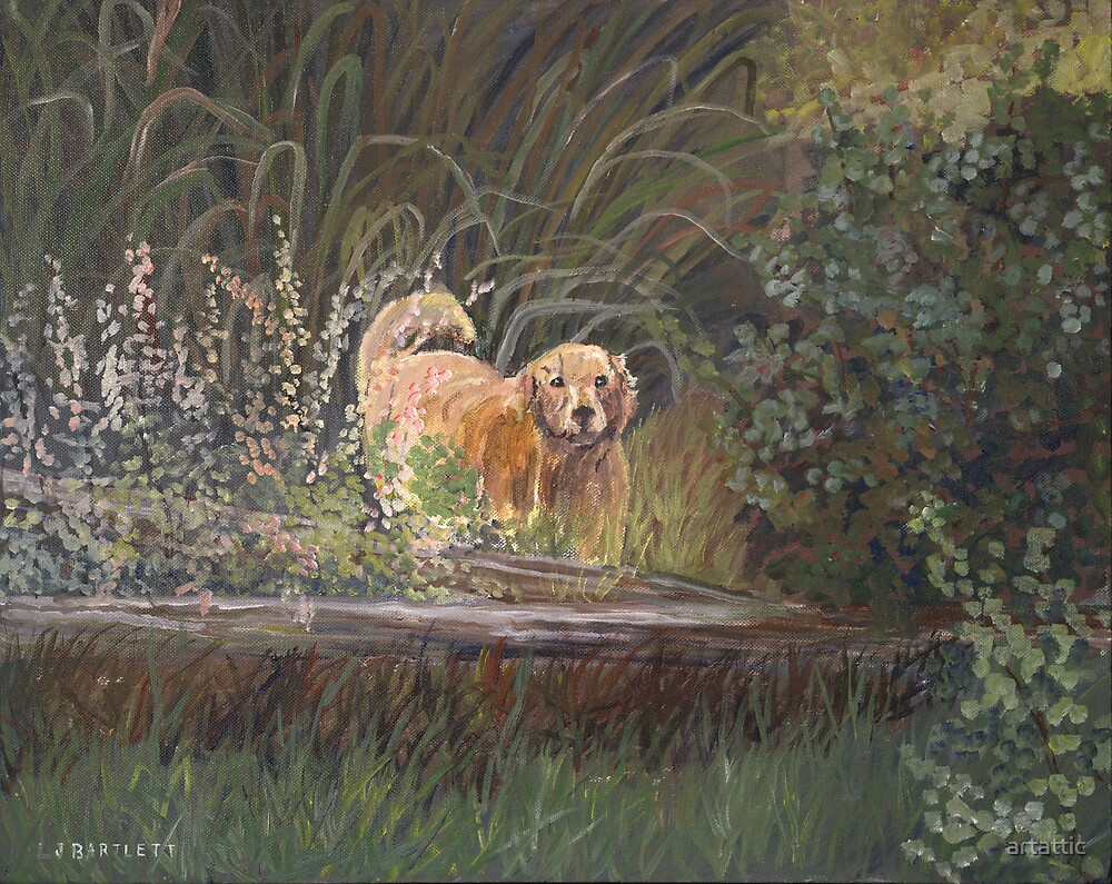 Garden Dog by artattic