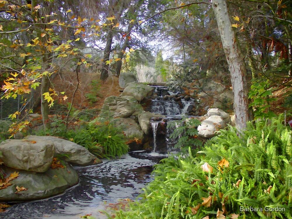 Fall Waterfall by Barbara Gordon