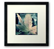 Chilled Colour Framed Print