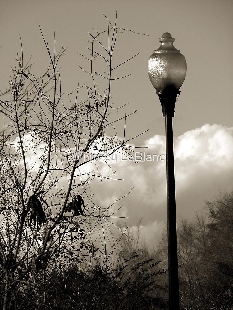 Lightpost by Whitney LeBlanc