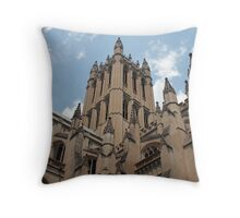 Awestruck At The Cathedral Throw Pillow