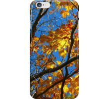 Sunny Orange Leaves with Branches iPhone Case/Skin