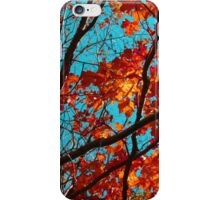 Sunny Red Leaves with Branches iPhone Case/Skin