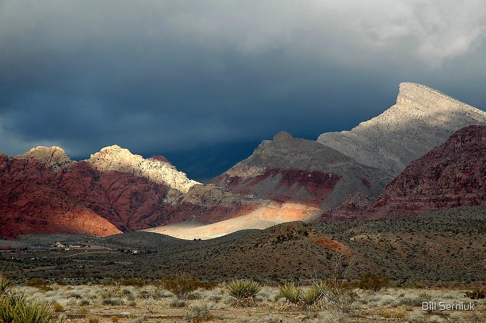 Calico Basin by Bill Serniuk
