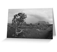 Navajo Land 2 Greeting Card