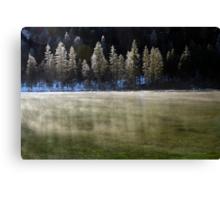 Winter Haze Canvas Print