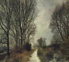 On the Marsh by Sarah Jarrett