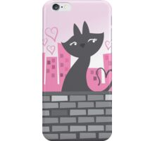 Sweet City kitty on a stone wall iPhone Case/Skin