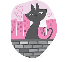 Sweet City kitty on a stone wall Photographic Print