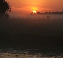 Coroborree Sunrise by Brett Habener
