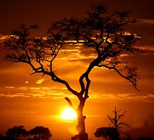 Satara Sunset by Marie Strydom