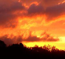 Sky Of Fire by JoLennox