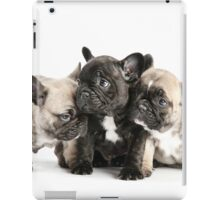 Frenchie Pals iPad Case/Skin