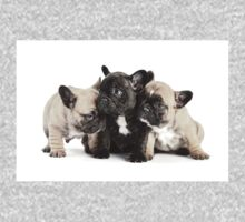 Frenchie Pals Kids Clothes