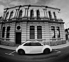 Beetle street by Seng Mah