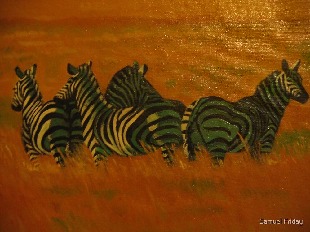 zebra's alert by Samuel Friday
