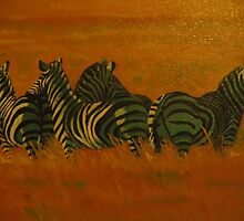 zebra's alert by Samuel Friday