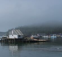 A Foggy Morning in Stonington Harbor by yukonjack