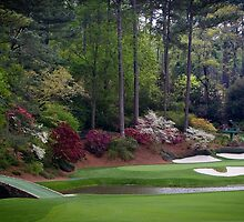 Golf Amen Corner Augusta Georgia Cases, Prints, Posters, Totes, Home Decor Gifts by 8675309