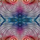 Mesmerising Rainbow by Steve Purnell