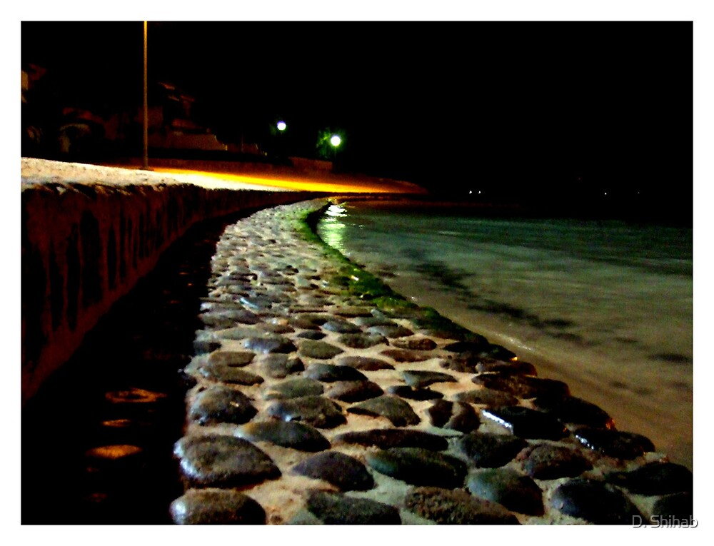 It's a Long Road... by D. Shihab