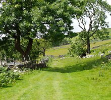 The Yorkshire Dales by justlinda