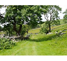 The Yorkshire Dales Photographic Print
