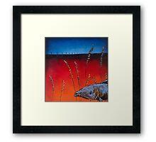 Prairie Salmon Framed Print
