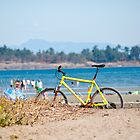 Beach Cycle by Rae Tucker