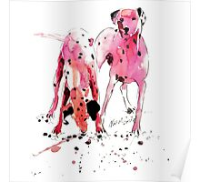 Pink Dalmations by Neil McBride Poster