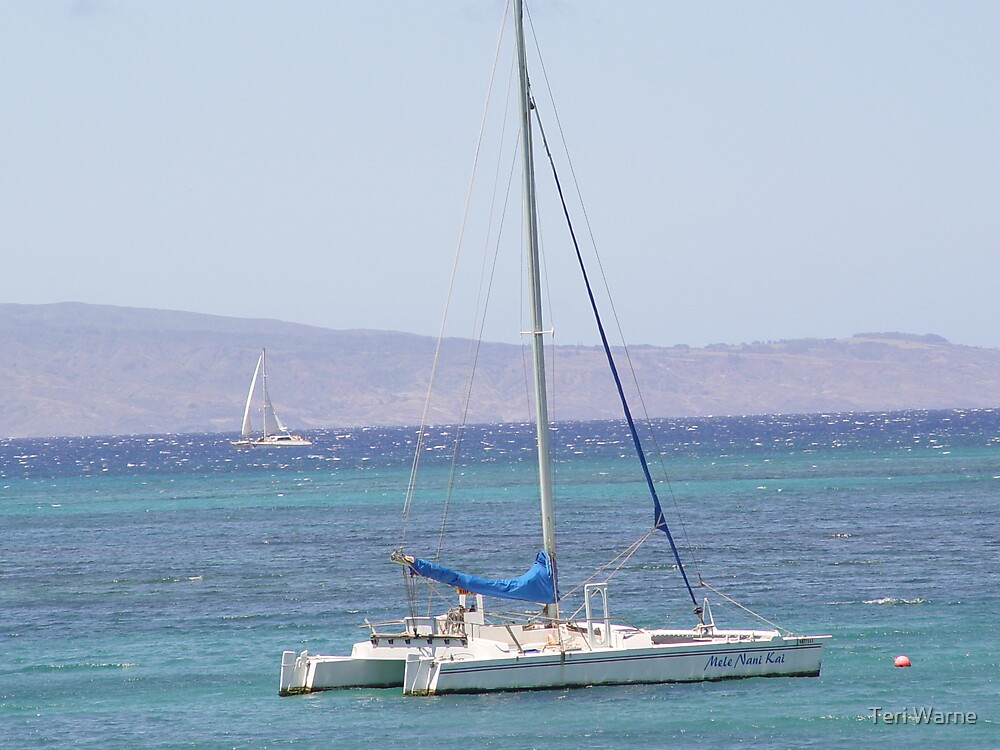 Pacific Sailing by Teri Warne