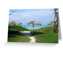 Peaceful pathways Greeting Card