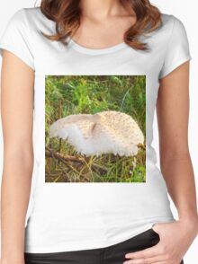 White Toadstool 7 Women's Fitted Scoop T-Shirt