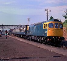 British Rail Class 33 Diesel at Ludlow, c. 1983 by cardsdifferent