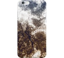 Bottom View of Pine Tree 4 iPhone Case/Skin