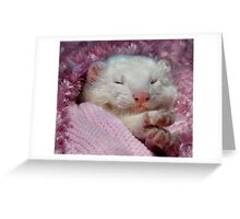 Snoozing Ferret Greeting Card