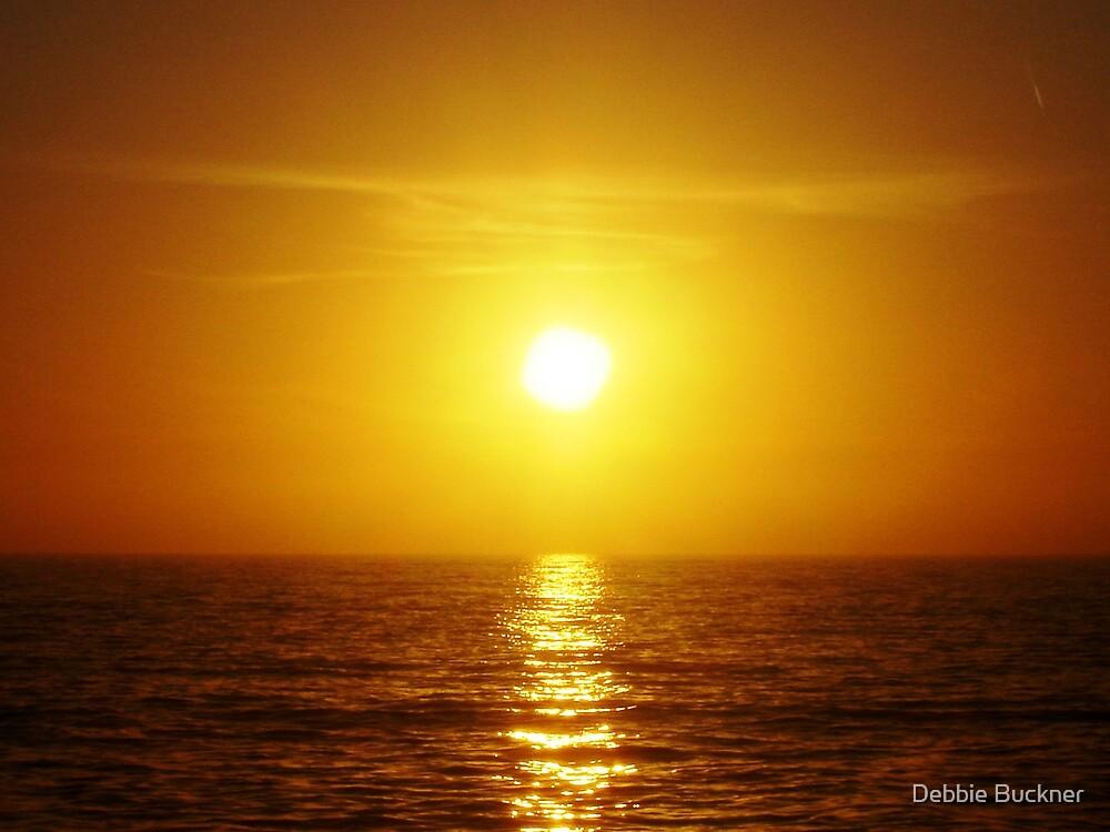 Catalina Sunset by Debbie Buckner