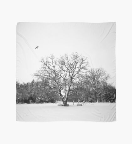 The Winter Trees in Black White Scarf