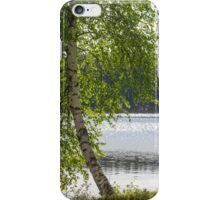 Summer and green birch iPhone Case/Skin